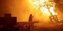 رئيسة تشيلي تشكر الإمارات على منحة مكافحة الحرائق
