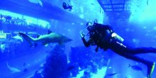 أحمد جراغ: أول لحام إماراتي تحت الماء