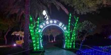 تعرف على دبي جاردن جلو… أول حديقة متوهجة في العالم