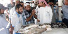 بدء العمل بقرار منع صيد وبيع أسماك الشعري والصافي