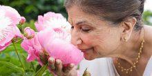 دراسة تؤكد أن فقدان حاسة الشم يحذر من الموت المبكر