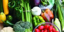 التغذية الصحية تقي من تراكم الحصوات بالمرارة