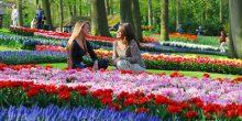 بالصور | تعرف على أفضل وجهات السفر في فصل الربيع